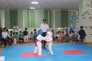 Karate section